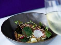 Octopus-fermented-chinofarms-radish_2