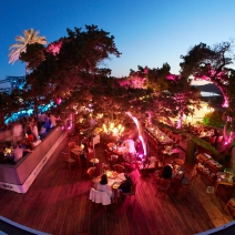 Blue Marlin External Image by Gin and Bone