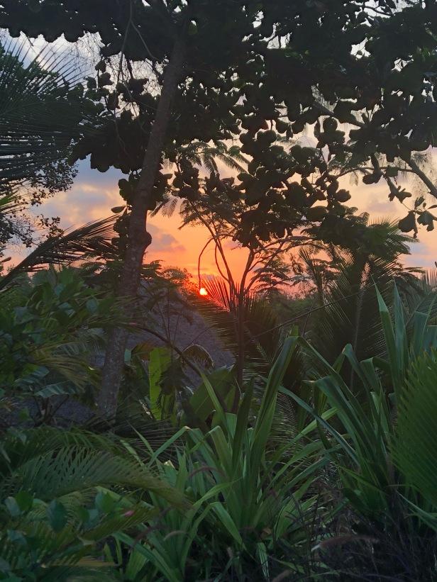 Sunset Tulia Zanzibar Africa