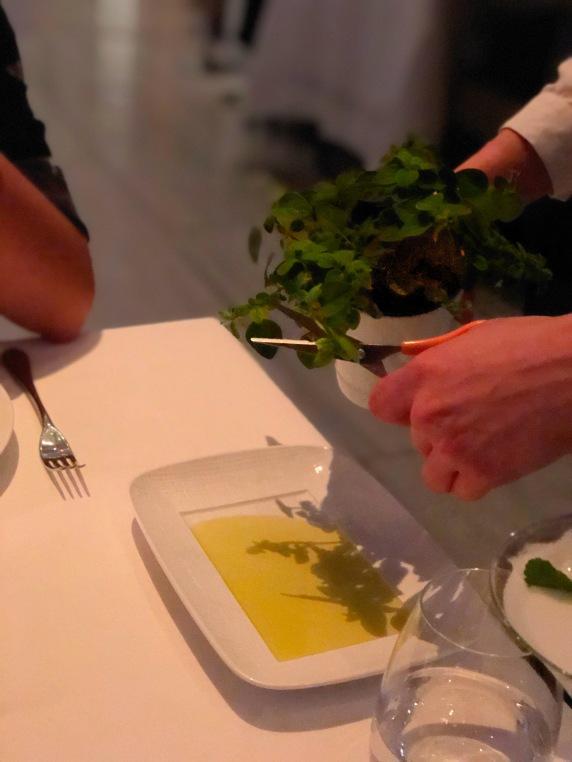 Bread & Herbs - Calamari - Estiatorio Milos - London - Greek Food