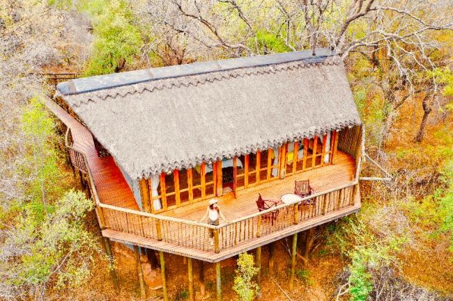 Jaci's Lodge Madikwe South Africa Safari